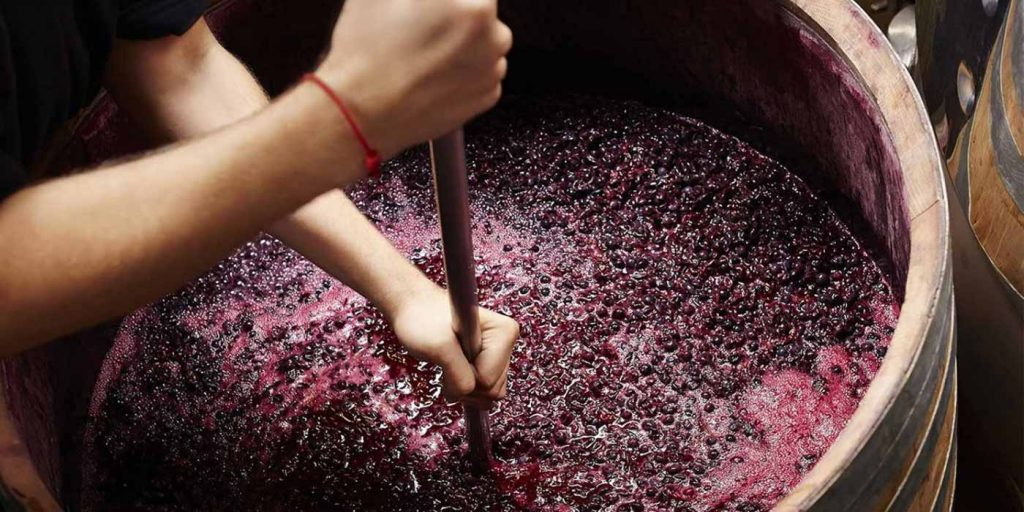 Making rad wine